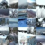 A Snowfall Collage