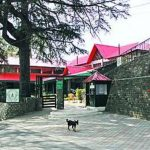 Kasauli-Kasauli Club-2